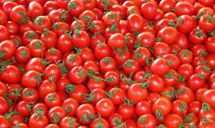 tomatoes-vegetables-red-delicious-market-stand