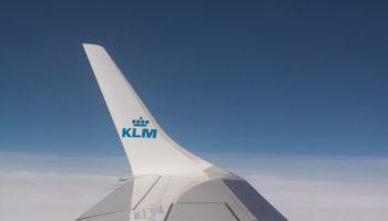 wing-413821_960_720
